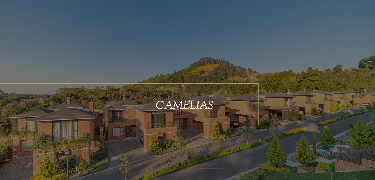 Casas en Condado Concepcion